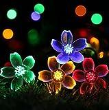 Natthom LED flor de melocotón solar linterna de luz solar linterna de bola...