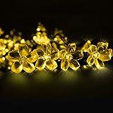 Cadena de Luces, Mr.Twinklelight 6.5M 50 LED Flor Solar Luz Decorativa para...