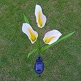 Coolmall - Luces solares de jacinto/flor de cala, luces LED solares de flores...